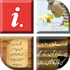 Best Urdu Status 2018 APK v1.04 (479)
