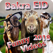 Bakra EID Funny Videos 2018