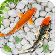 Fish Live Wallpaper 2018: Aquarium Koi Backgrounds For PC