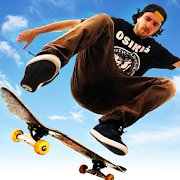 Skateboard Party 3  Latest Version Download