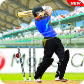 Pakistan Cricket T20 League 2019: Super Sixes Latest Version Download