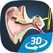 The mechanism of hearing educational VR 3D 1.6 Android Latest Version Download