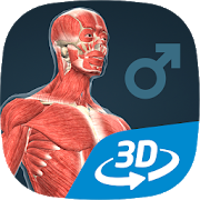 Human body (male) educational VR 3D APK