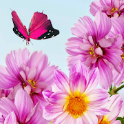 Download com-robin-flyingbutterflyfree 1.0 APK File for Android