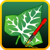 Ivy Draw: Vector Drawing  Latest Version Download