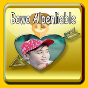 Custom App Bowo Alpenlible
