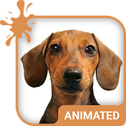 Doggy Dream Animated Keyboard APK
