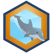 Dolphin Challenge  Latest Version Download