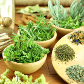 Herbs and Use  Latest Version Download